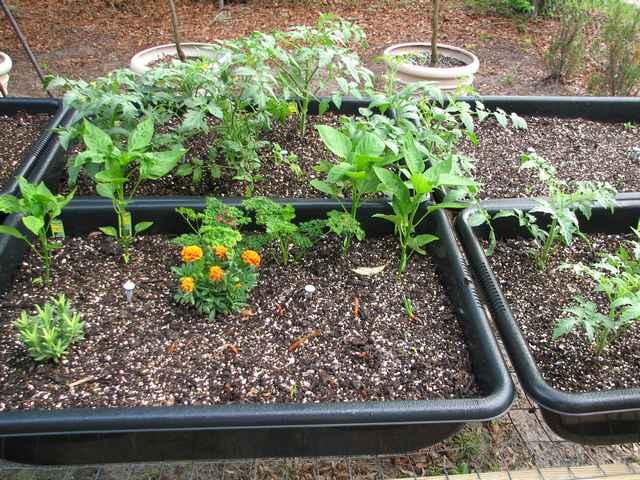 Concrete Mixing Tub : Mixing tub garden the southern agrarian