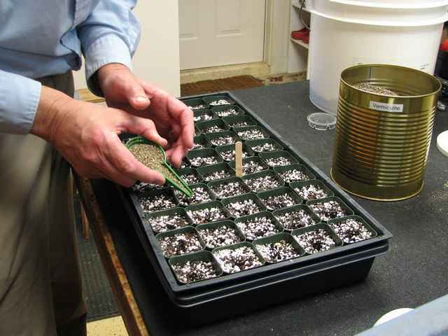 A different type of seed dispenser being used to cover the seeds with medium Vermiculite. I then use a misting nozzle to wet the surface without disturbing the seeds.