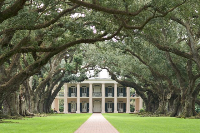 Photo by Ian Wagg on Unsplash. Oak Alley Plantation